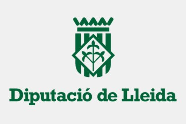 DIPUTACIO LLEIDA